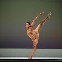 2011 Repertory
